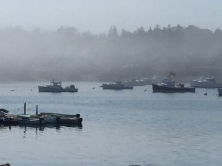 Maine - Bass Harbor Fog