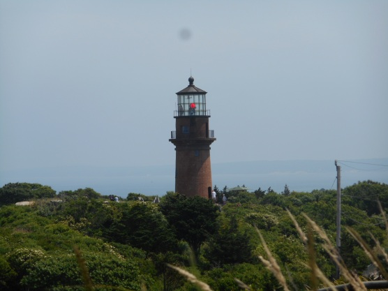 Martha's Vineyard (6)
