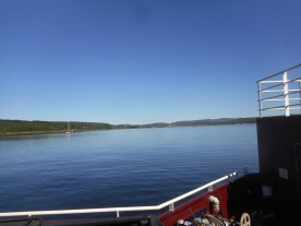 St. John River from Ferry