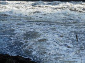 Saint John - Reversing Falls (16)