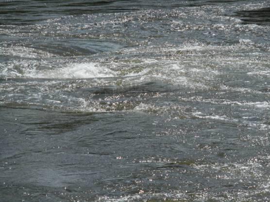 Saint John - Reversing Falls (31)