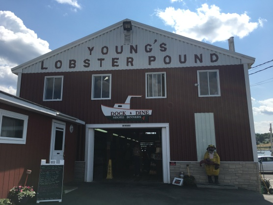 ME - Young's Lobster Pound (1)